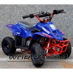 Mini QUAD INFANTIL Sport R6 110cc 4-T (Automatico)