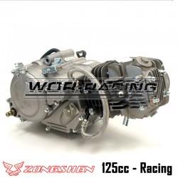 Motor 125cc ZONGSHEN - Manual (ZS154FMI-2)