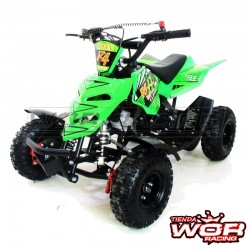 Mini QUAD- RAPTOR- 49 cc